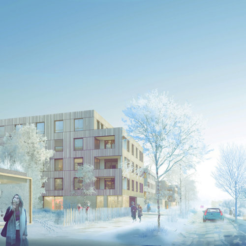 TOR _ 178 logements bois